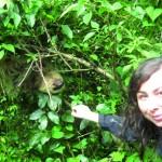 bald könnt ihr mit dem Faultier in Costa Rica kuscheln