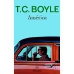 América von T.C. Boyle