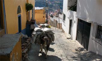 Impressionen aus Mexiko