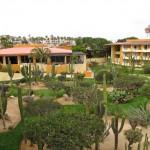 Garten im Posada Real los Cabos