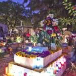 Dia de los Muertos Oaxaca & Umgebung