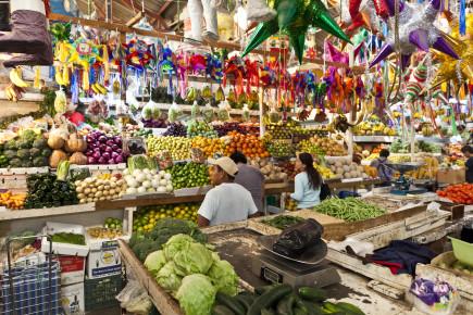 Das ist Mexiko: Ein Fest an Farben, Gerüchen, Geschmäckern und Geräuschen!